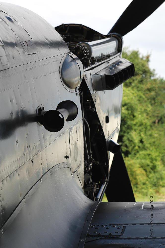 C-36_D-FRBI_2013-07-301a.jpg