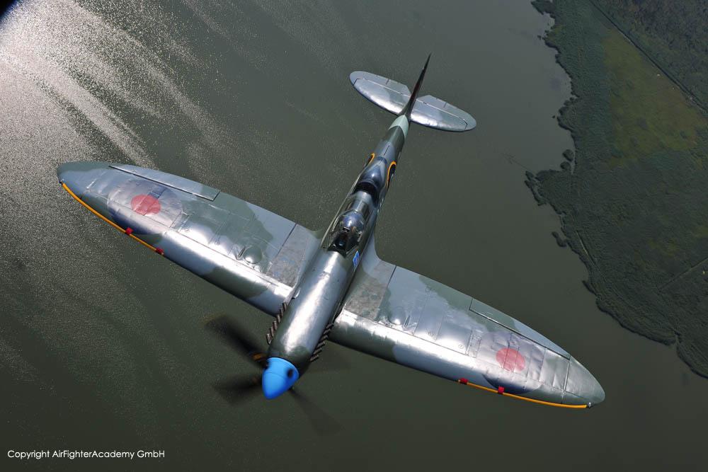 SpitfireT9_D-FMKN_a2a_4.jpg