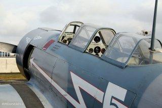 Yak-11_D-FJII_2011-02-255.jpg