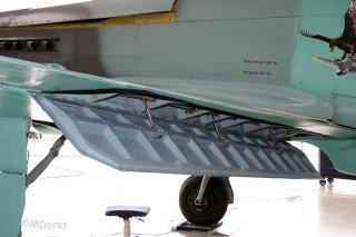 Yak-9_D-FAFA_3004105.jpg