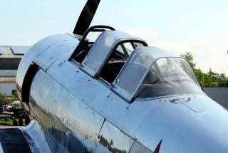 Yak-11_D-FMAX_2011-07-2912.jpg