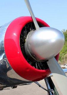 Yak-11_D-FMAX_2011-07-2914.jpg